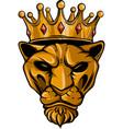 vintage of a tiger in a crown vector image