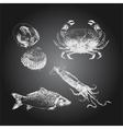 Seafood chalkboard drawing sketch set vector image