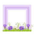 decorative frame for photo or text spring flowers vector image vector image