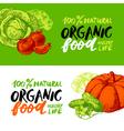 Eco food menu banners Hand drawn sketch vegetables