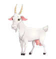 goat vector image