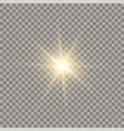 golden glowing sun vector image vector image