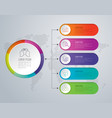 infographics design with 5 options vector image