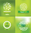organic and natural emblem and logo design vector image