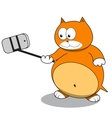 Red cat taking a selfie using selfie stick vector image
