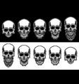set skull isolated on dark and bright vector image