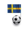 Soccer Balls or Footballs with flag of Sweden vector image vector image