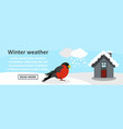 winter weather banner horizontal concept vector image vector image