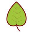 line color tropical natural leaf plant design vector image vector image