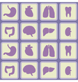 Seamless background with organs of the human body vector image vector image