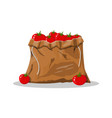 tomato vegetable in canvas bag vector image vector image