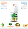 Vitamin K Chart Diagram Health And Medical vector image