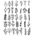 0130 hand drawn flowers doodle vector image vector image