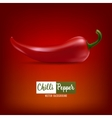 background with red chilli pepper vector image vector image