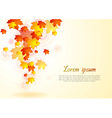Elegant autumn background vector image