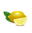 realistic detailed 3d whole lemon and slices vector image vector image