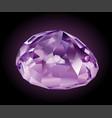 shining violet kunzite vector image vector image