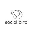 social bird concept design template vector image
