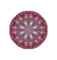 Colorful round mandala template vector image vector image