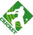 cricket batsman batting front vector image vector image
