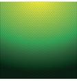dots texture vector image vector image