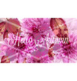 hello autumn pink daisy flowers banner vector image vector image