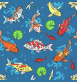 koi fish japanese carp vector image