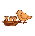 mother bird sits on edge of nest with babies vector image vector image