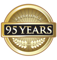 Ninety Five Years Experience Gold vector image vector image