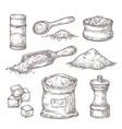 salt sketch hand draw spice vintage bowl spoon vector image