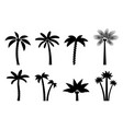 set simple palm trees vector image