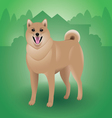 Shiba-Inu-Dog vector image