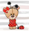 teddy bear girl in a ladybug costume and ladybug vector image vector image
