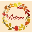 Autumn leaves and flowers wreath vector image