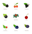 berry business icons set cartoon style vector image
