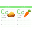 c for cheese and for carrot vector image vector image