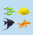 exotic fishes realistic underwater life aquarium vector image