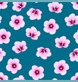 hibiscus syriacus - rose sharon on indigo blue vector image vector image