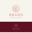 k brand logo vector image