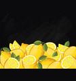lemon fruit composition on chalkboard vector image