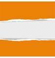 orange torn paper vector image vector image