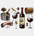 wine set alcoholic drink in hand sparkling vector image vector image
