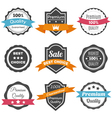Collection of retro vintage labels Best choice vector image