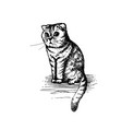 cute kitty sitting hand drawn sketch vector image vector image
