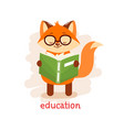 education concept cute fox in glasses reading a vector image