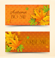 floral autumn sale horizontal banners vector image vector image