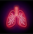 glow healthy lungs human respiratory system vector image