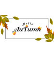 hello autumn green leaves maple background vector image