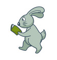 bunny with long ears walks and reads book vector image vector image
