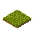 Grass Pattern Isometric vector image